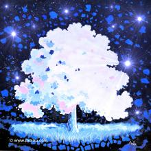 Magic Dream 7 - ARTEC
